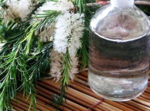 olio di melaleuca infezioni urinarie