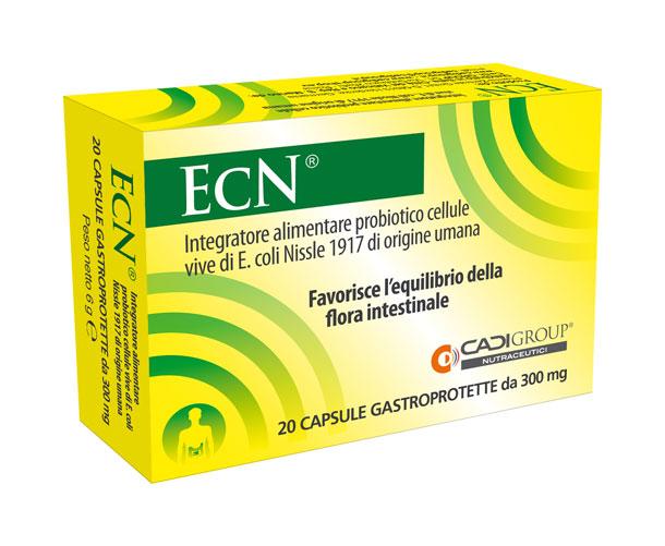 escherichia coli sintomi cistite