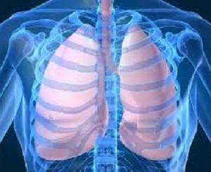 batteri Gram positivi e negativi infezioni polmonari